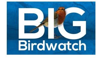 Birdwatch Weekend