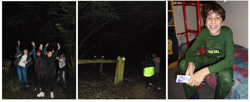 15 Night walk   reflector trail