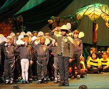 12. Y2 elephant parade