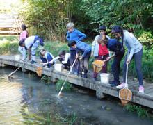 Sayers Croft Pond